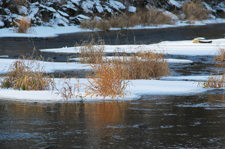 sear: islands of ice with tussocks of sear grass in the river in winter