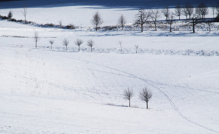 covered fields: winter landscape with fields covered with snow and some bare trees