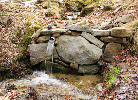 streamlet: spring of clean water in the Beskydy mountains