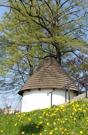 blossoming yellow flower tree: old beautiful well in the park under the green tree and blooming dandelions around it in spring Stock Photo
