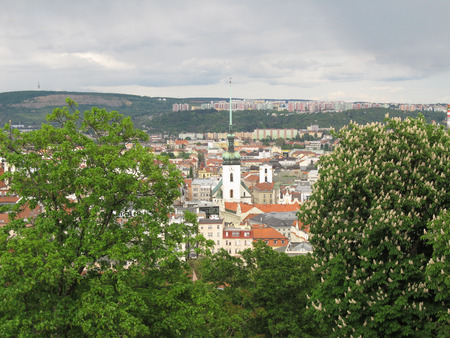 view on historical center of Brno, Czech Republic and blooming chestnut tree at the foreground