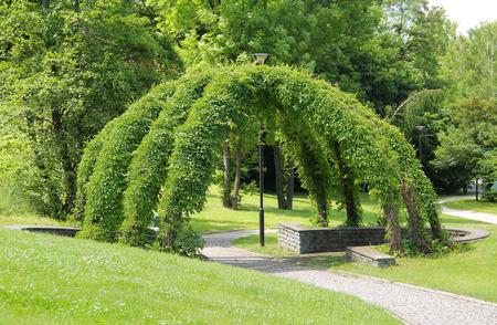 nook: green wicker arbour in the park in summer