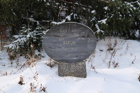 headstone: headstone on the dog cemetery in Beskydy mountains, Czech republic in winter Stock Photo