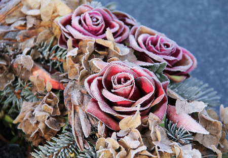 detail of blooms of roses on the funeral wreath covered with hoarfrost