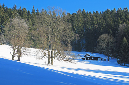 old cottage, some bare trees and spruce forest on sunny winter day, Beskydy mountains, Czech Republic  - editorial