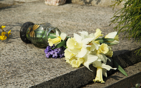 fallen vase with light yellow daffodils on the cemetery