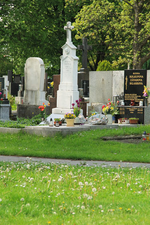 cross recess: nice decorated graves on the cemetery and fluffy dandelions in the foreground in Frydek-Mistek, Czech Republic - editorial
