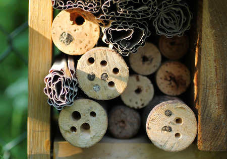 close photo of sealed holes in the branches in the bug hotel for solitary bees and other insect