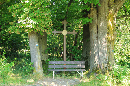 cross recess: Old cross and wooden bench among the trunks of big old trees in summer, Beskydy mountains, Czech republic