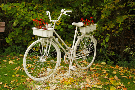 old bike painted white with flowerpots in the garden in autumn