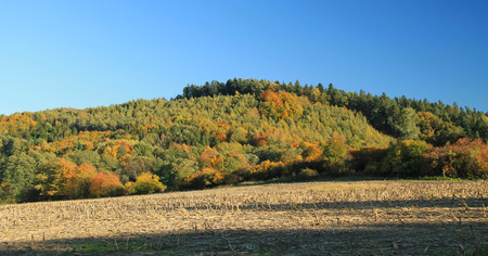 plowing: autumn landscape with colorful trees on the hills and ploughed field, Beskydy mountains, Czech Republic