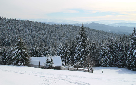 landscape with a cottage and forests in winter, Grun, Beskydy mountains, Czech Republic