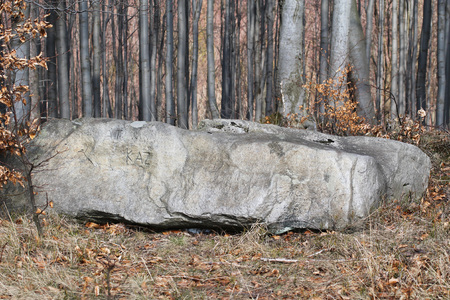 headstone on the cemetery for hunting dogs on Zdar Hill, Beskydy mountains, Czech Republic