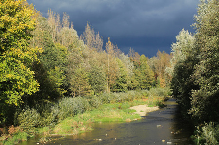 Moravka river with growth of trees on its banks on sunny autumn day and dark clouds on the horizon - Czech Republic
