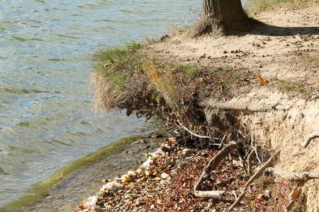 sponda minata di uno stagno con basso livello d'acqua