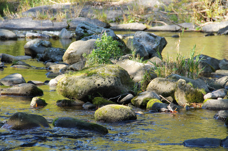 some round boulders in the river with low level of water Stock Photo
