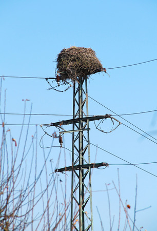 nest of white storks built on the power transmission pole Imagens