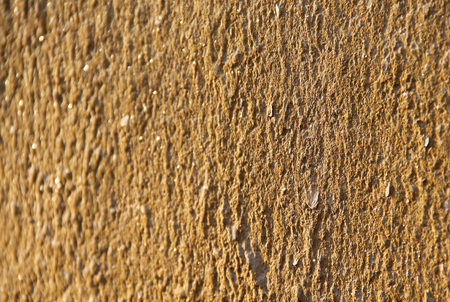 detail of the surface of a yellow wall useful as background