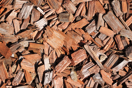 close photo of some pieces of bark for mulching