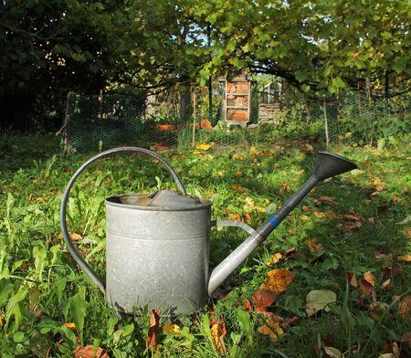 metal watering can in the garden in autumn