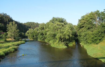Sazava river with an island with some trees in summer, Czech Republic