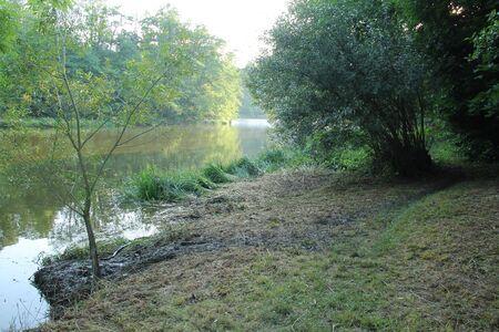 a path created by coypus on the bank of Sazava river, Czech Republic Reklamní fotografie