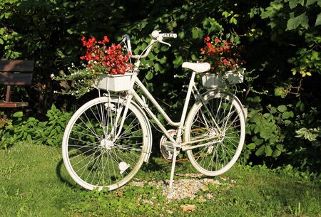 bike painted white with flowerpots in the garden