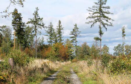 path leading through the nature in autumn, Beskids, Czech Republic Reklamní fotografie