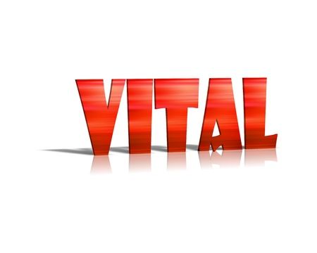 vital: Vital 3d word Stock Photo