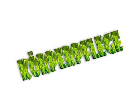 heathcare: bodycare 3d word Stock Photo