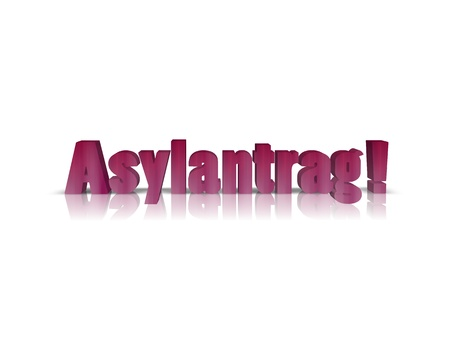 asylum: asylum applicant 3d word
