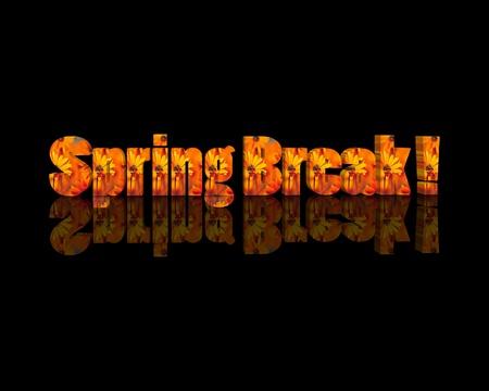 springbreak: springbreak 3d word