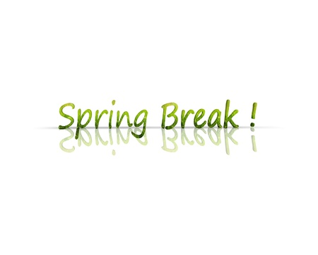 spring break: Spring Break 3d word Stock Photo