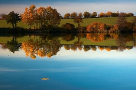 Autumn near pond photo