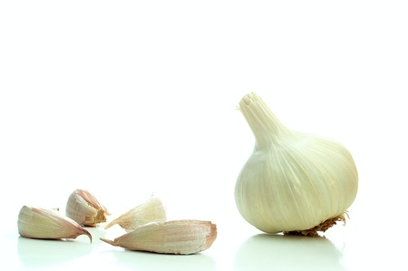 Single whole garlic on a white background