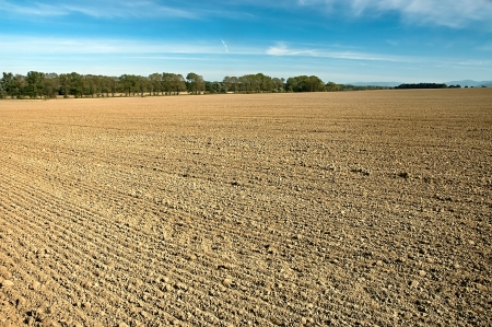 arable land: Autumn cultivated arable land plow with trees in the background Stock Photo