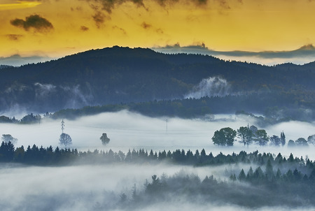 czech switzerland: Foggy morning in the romantic landscape of the Czech Switzerland