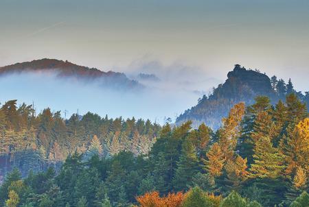 czech switzerland: Mattina nebbiosa nel paesaggio romantico della Svizzera Ceca Archivio Fotografico