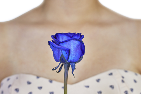 Detail view of a blue rose with a womans decollete in the background
