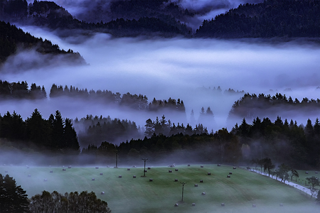 Foggy morning in the romantic landscape of the Czech Switzerland