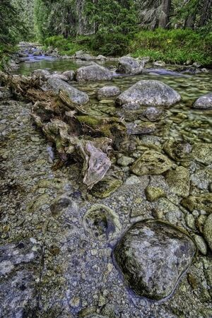 Flowing mountain stream with stones in High Tatras, Slovakia