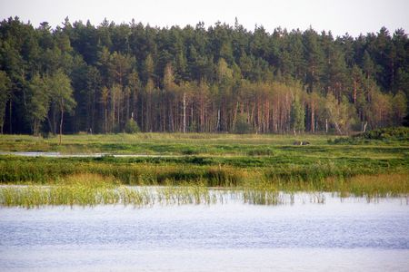 echo: This is a view of Echo mere in Zwierzyniec, Poland.