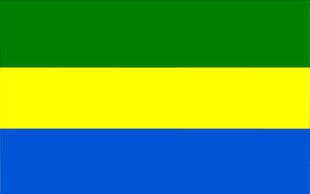 polity: This is Gabon flag illustration, computer generated. Illustration