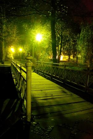 This is a view of local park in the fog at night. Stock Photo