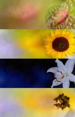photomanipulation: Oil painted flower banner set for multipurpose use in web design, background, photomanipulation, hobby and or scrapbooking needs Stock Photo