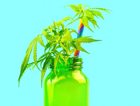 Cannabis CBD smoothie in green glass juice bottle with colored straw isolated on blue