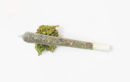 Marijuana Joint on Cannabis flower bud from above isolated on white background 版權商用圖片