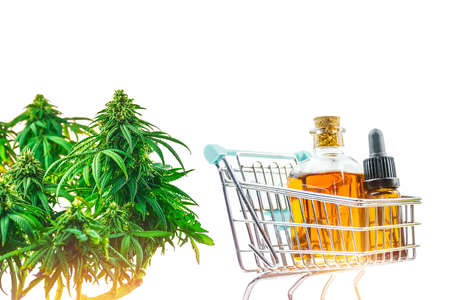 Supermarket trolley with Cannabis CBD oils and Marihuana plant isolated on white