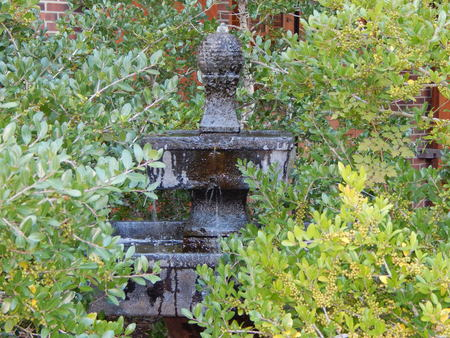 water fountain in the bushes