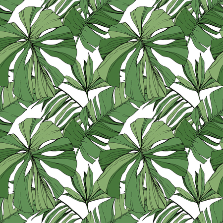 Vector Green leaf plant garden floral foliage. Engraved ink art. Exotic tropical hawaiian summer. Palm beach tree leaves jungle botanical. Seamless background pattern. Fabric wallpaper print texture.